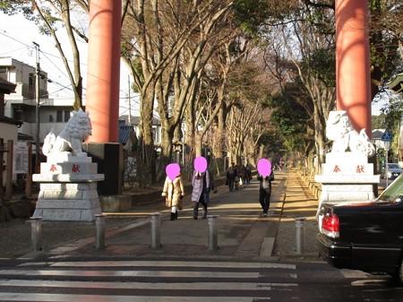 氷川神社に狛犬