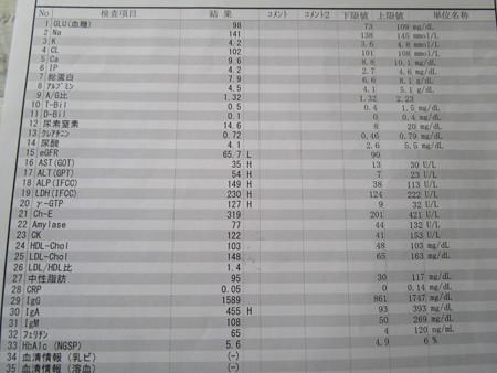 肝臓値がH