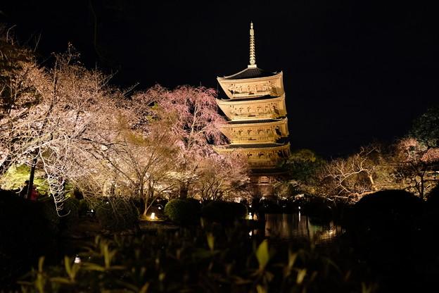 2019-03-31-東寺夜間拝観_07