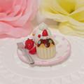 n019ミニチュア/いちごカップケーキプレート/セキセイ・アルビノ(横2)