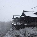写真: 下雪的清水寺
