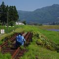 いつかまた列車が走れば良いのだけれど・・・