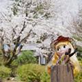 Photos: あれ~~~!