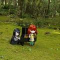 Photos: 森の音楽会へようこそ♪