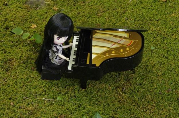 世界的ピアニストを目指して