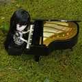 Photos: 世界的ピアニストを目指して