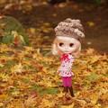 Photos: 紅葉を楽しむパラダイスゴーゴー