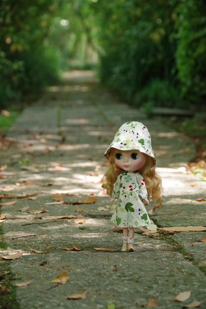 石畳を歩くレパードサース