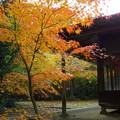 Photos: 紅葉の季節は人も来るんだなぁ・・