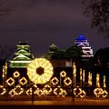 Photos: 熊本城 夜間ライトアップ
