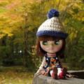 晩秋を楽しむ