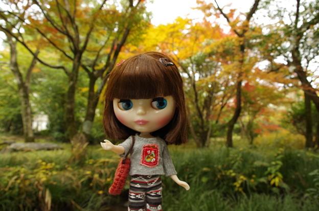 甘栗Tシャツは秋にピッタリ(^_-)-☆