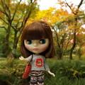 Photos: 甘栗Tシャツは秋にピッタリ(^_-)-☆
