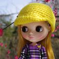 Photos: 梅の花を見つめるドロンジョ様