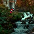 Photos: 滝をみに行く