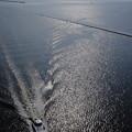 写真: 中の島大橋から