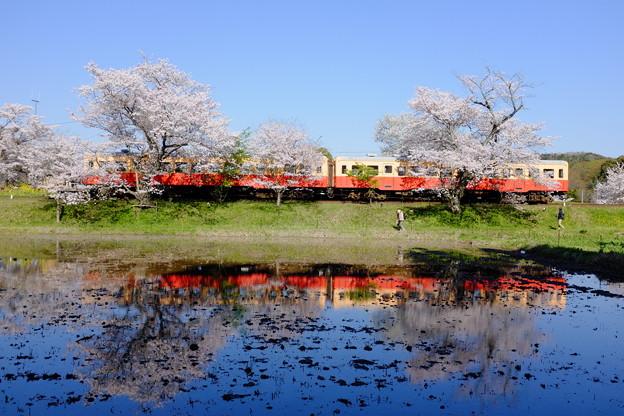写真: 小湊鉄道飯給駅