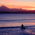 写真: 片瀬西浜海岸から