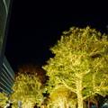 Photos: 新宿サザンテラス