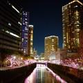 Photos: 目黒川みんなのイルミネーション
