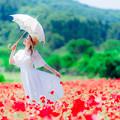 Photos: 天空の美人草