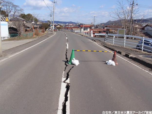 写真: Miyagi 144