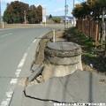 写真: Miyagi 320