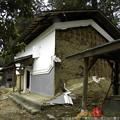 写真: Miyagi 331