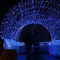Photos: 光のトンネル