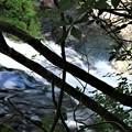 Photos: 滝上流