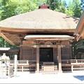 茅葺の屋根