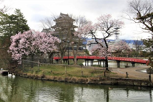 松本城3475