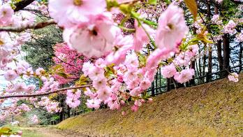Photos: 梓川公園