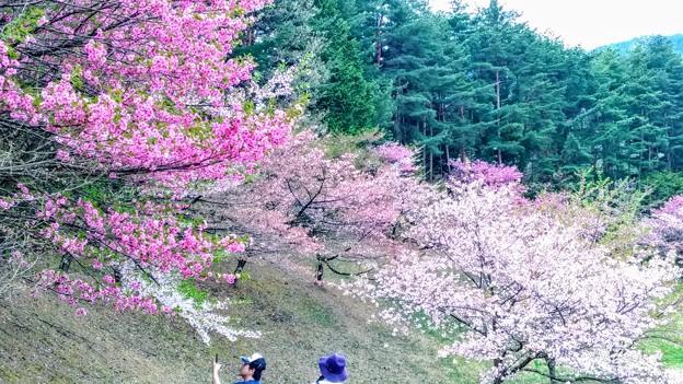梓川公園4