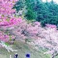Photos: 梓川公園4