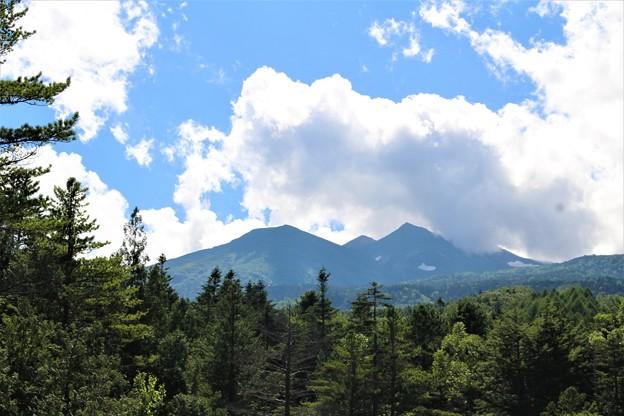 Photos: 夏の乗鞍高原