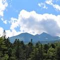 夏の乗鞍高原