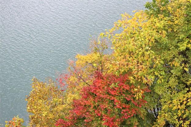ダム湖の紅葉