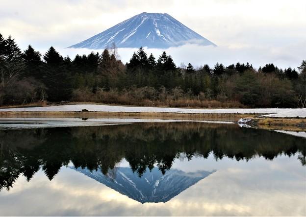 Photos: 逆さ富士(令和3年)