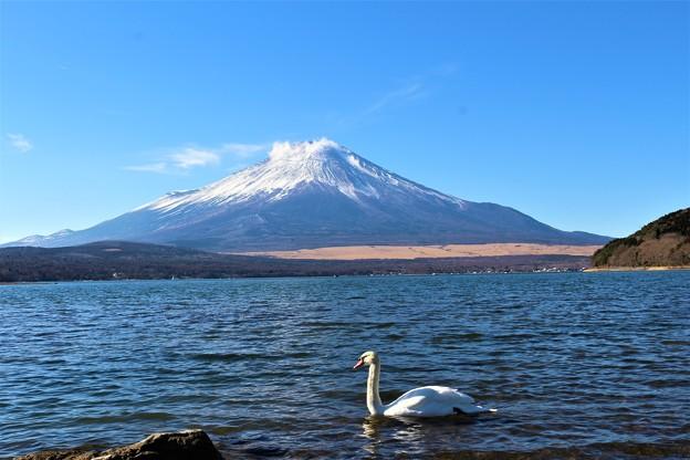 Photos: 富士山1