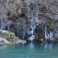 Photos: 川辺の氷柱