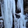 氷柱の芸術