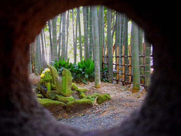 灯篭越しの竹林と石像@報国寺 #鎌倉 #kamakura #temple #寺 #mysky