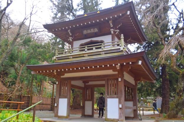 浄智寺鐘楼門 #湘南 #鎌倉 #kamakura #寺 #temple