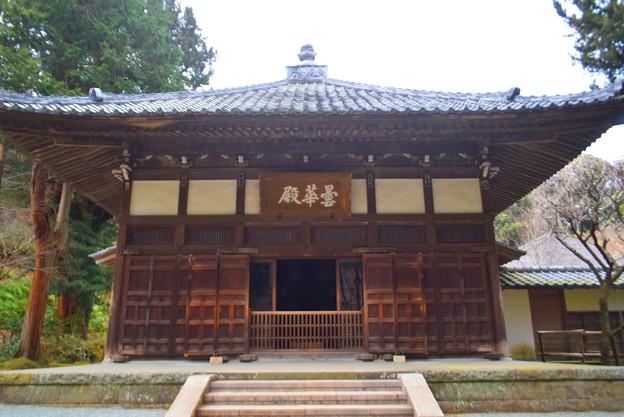 浄智寺 曇華殿 #湘南 #鎌倉 #kamakura #寺 #temple