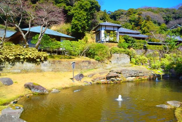 香妙池@円覚寺 #湘南 #鎌倉 #kamakura #mysky #寺 #temple