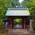 亀谷山寿福金剛寺 総門 #鎌倉 #kamakura #寺 #temple