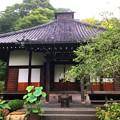 写真: 光則寺本堂 #鎌倉 #湘南 #kamakura #temple #寺