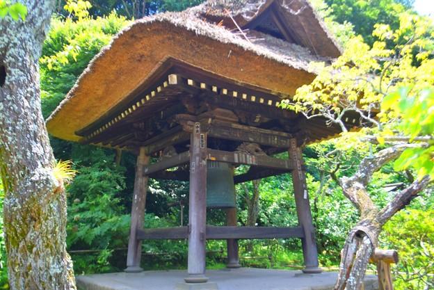 東慶寺鐘楼 #kamakura #鎌倉 #湘南 #寺 #temple