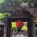 海光山長谷寺山門 #湘南 #鎌倉 #kamakura #寺 #temple #mysky